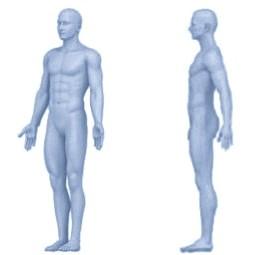 La Posture